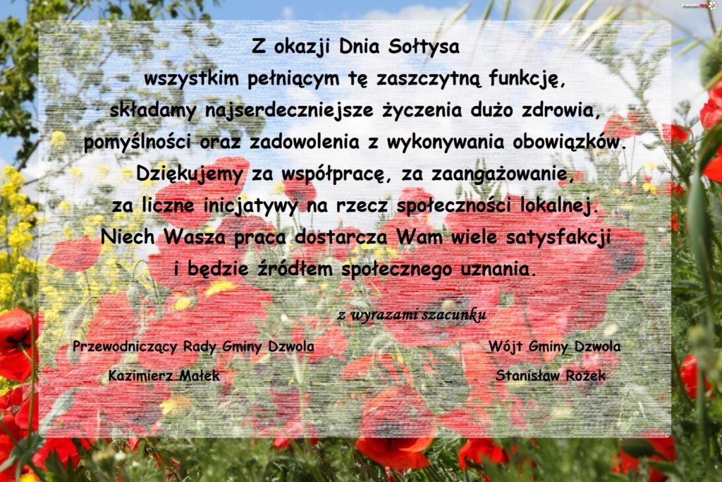 polne-maki-kwiaty
