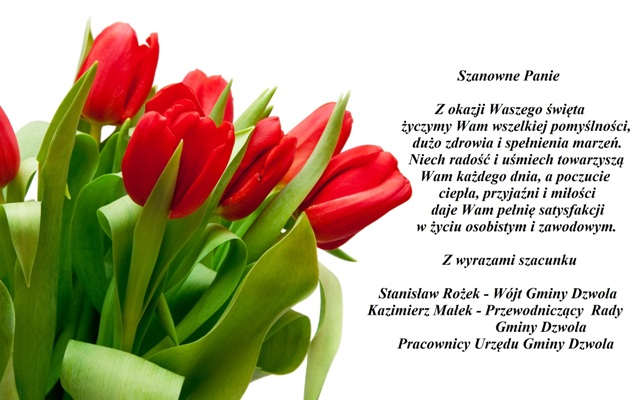 red-tulips-8